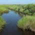 McFaddin National Wildlife Refuge
