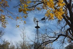 Windmill at the Sam Nail Ranch