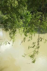 San Antonio River along the River Hiking Trail