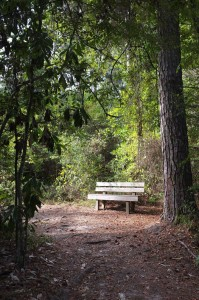 A rest stop along the Slough Trail