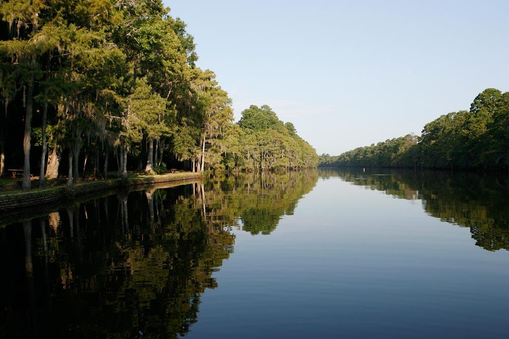 Caddo lake state park deartexas for Caddo lake fishing