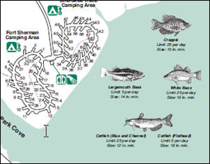 Lake Bob Sandlin State Park Deartexas