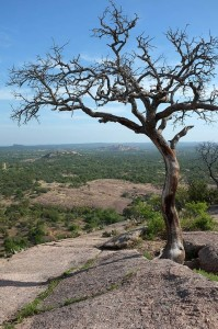 The view from the Enchanted Rock dome