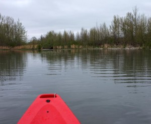 Kayaking upstream on a calm stretch of water
