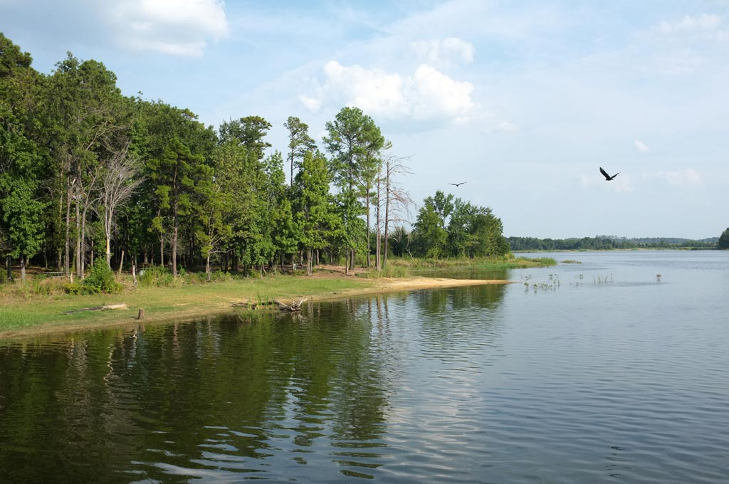 Martin Creek Lake State Park - DearTexas,