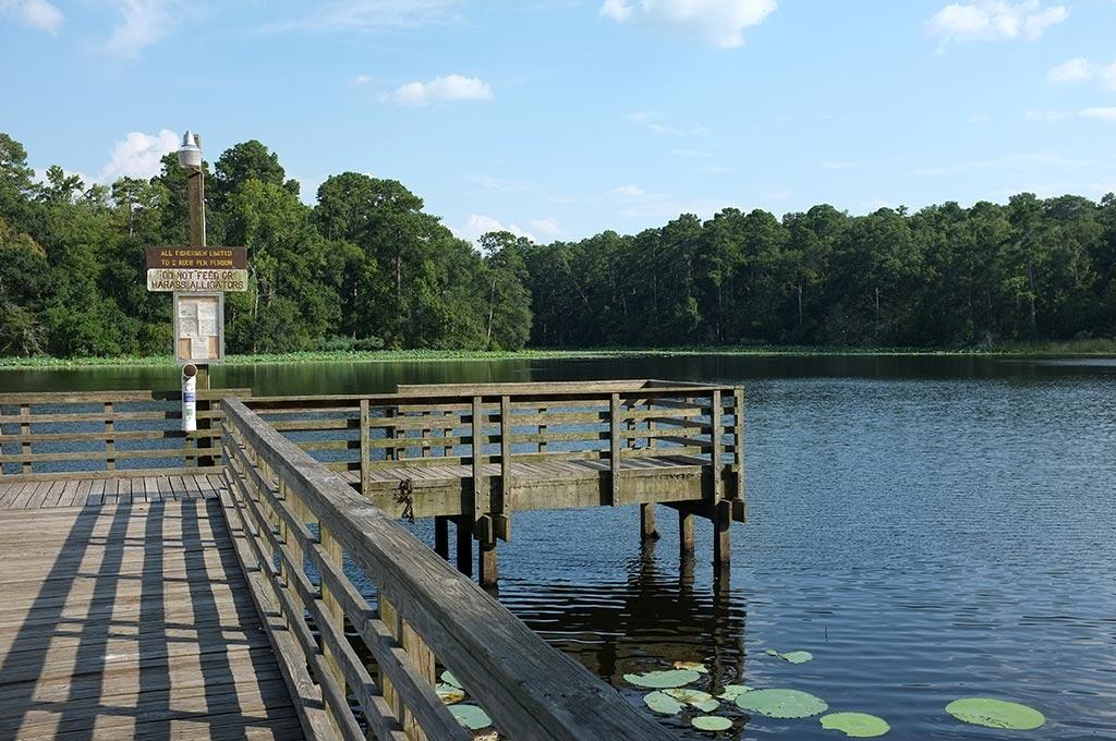 Huntsville State Park - DearTexas,